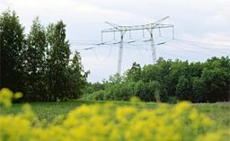Power line in the national grid.